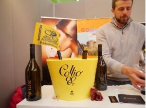 Tipicità vino Collio Gorizia